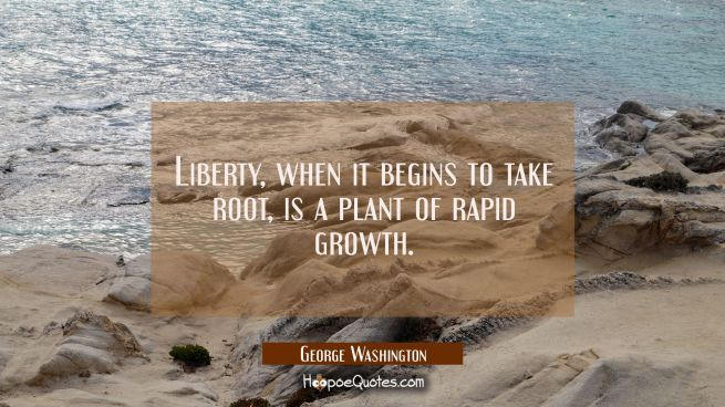 Liberty when it begins to take root is a plant of rapid growth.