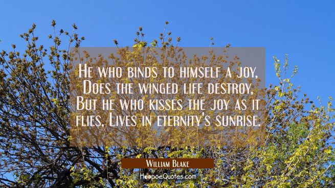 He who binds to himself a joy Does the winged life destroy, But he who kisses the joy as it flies L