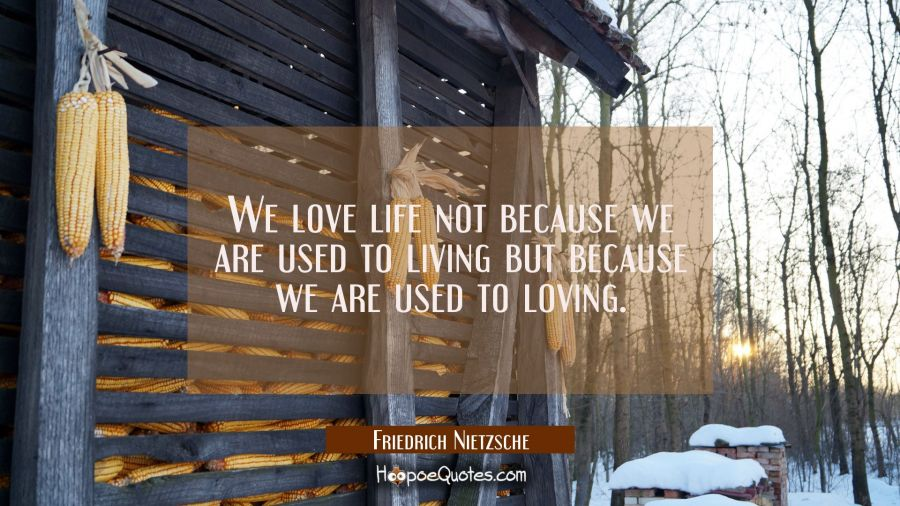 We love life not because we are used to living but because we are used to loving. Friedrich Nietzsche Quotes