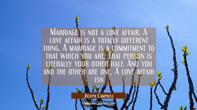 Marriage is not a love affair. A love affair is a totally different thing. A marriage is a commitme