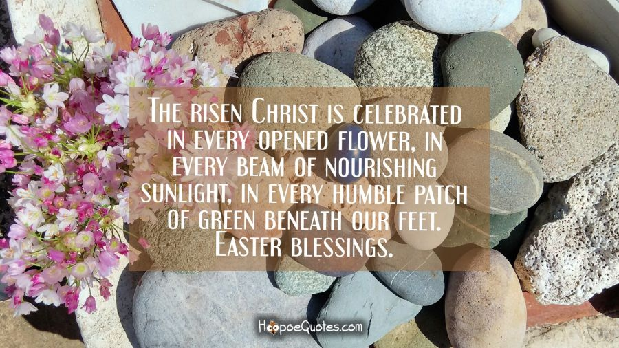The risen Christ is celebrated in every opened flower, in every beam of nourishing sunlight, in every humble patch of green beneath our feet. Easter blessings. Easter Quotes
