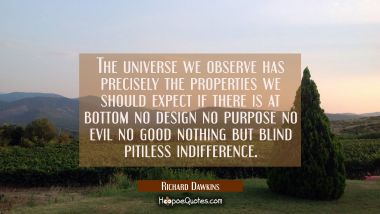 The universe we observe has precisely the properties we should expect if there is at bottom no desi