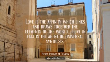 Love is the affinity which links and draws together the elements of the world... Love in fact is th