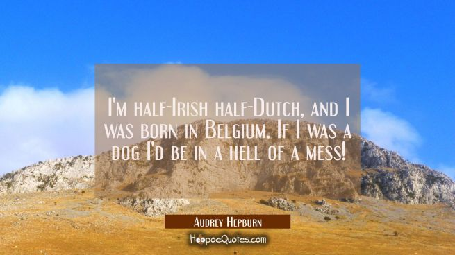 I'm half-Irish half-Dutch and I was born in Belgium. If I was a dog I'd be in a hell of a mess!