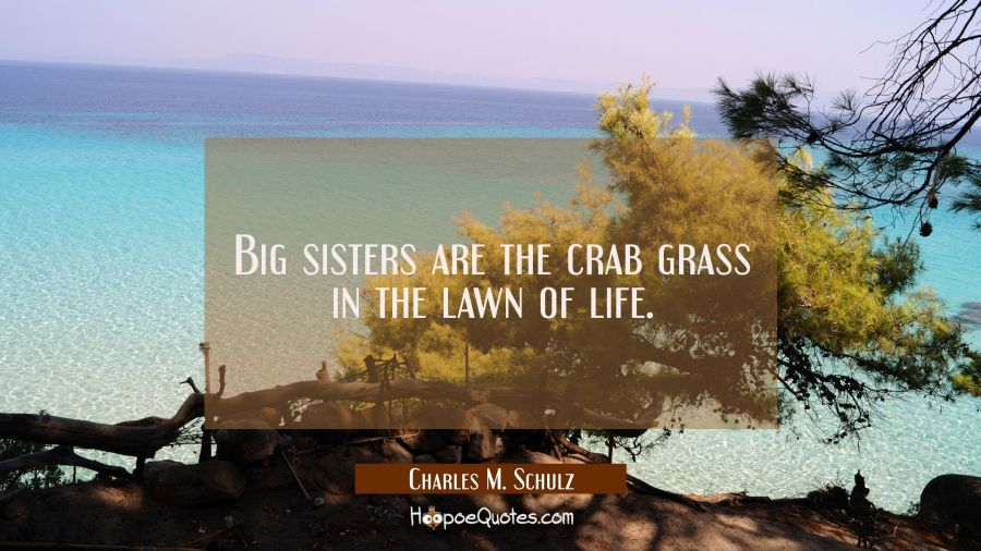 Big sisters are the crab grass in the lawn of life. Charles M. Schulz Quotes