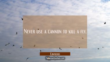 Never use a cannon to kill a fly. Confucius Quotes