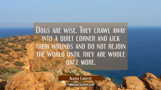 Dogs are wise. They crawl away into a quiet corner and lick their wounds and do not rejoin the worl