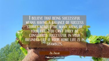 I believe that being successful means having a balance of success stories across the many areas of Zig Ziglar Quotes