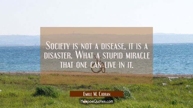 Society is not a disease it is a disaster. What a stupid miracle that one can live in it.