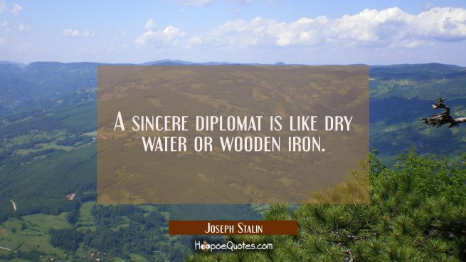 A sincere diplomat is like dry water or wooden iron.