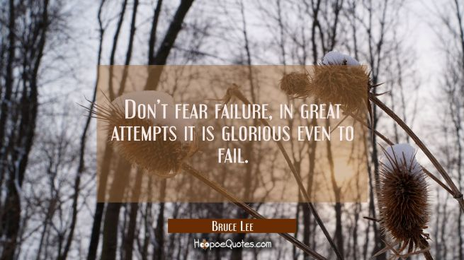 Don't fear failure, in great attempts it is glorious even to fail.