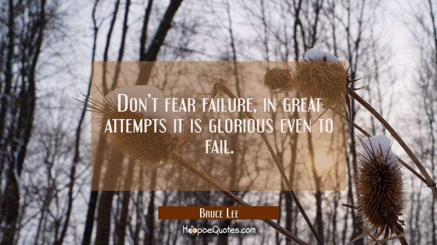 Don't fear failure, in great attempts it is glorious even to fail. Bruce Lee Quotes