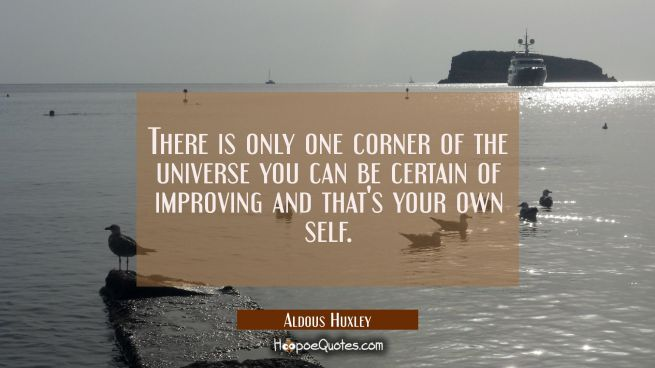 There is only one corner of the universe you can be certain of improving and that's your own self.