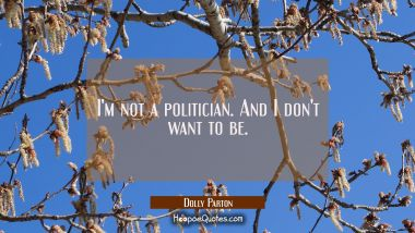 I'm not a politician. And I don't want to be.