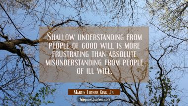 Shallow understanding from people of good will is more frustrating than absolute misunderstanding f
