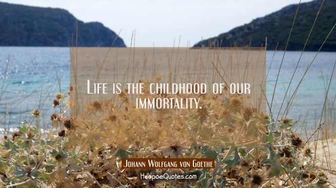 Life is the childhood of our immortality.