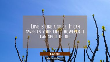 Love is like a spice. It can sweeten your life - however it can spoil it too""