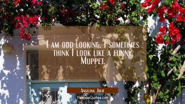 I am odd-looking. I sometimes think I look like a funny Muppet. Angelina Jolie Quotes
