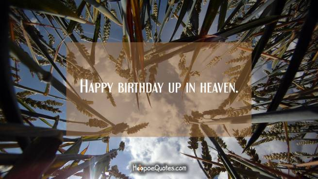 Happy birthday up in heaven.