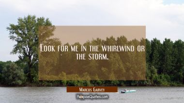 Look for me in the whirlwind or the storm.