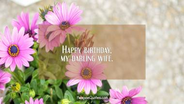 Happy birthday, my darling wife. Quotes