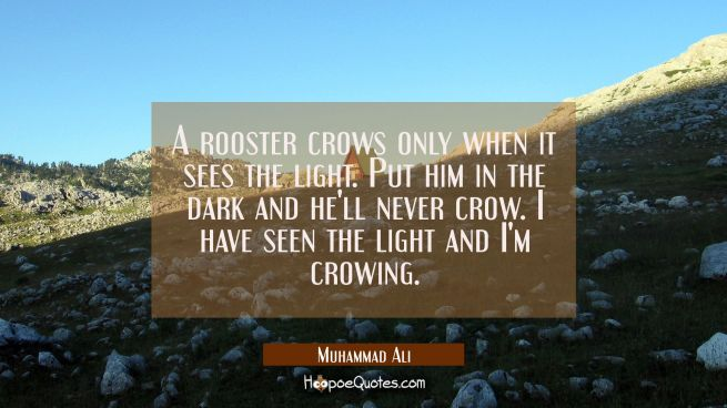 A rooster crows only when it sees the light. Put him in the dark and he'll never crow. I have seen the light and I'm crowing.