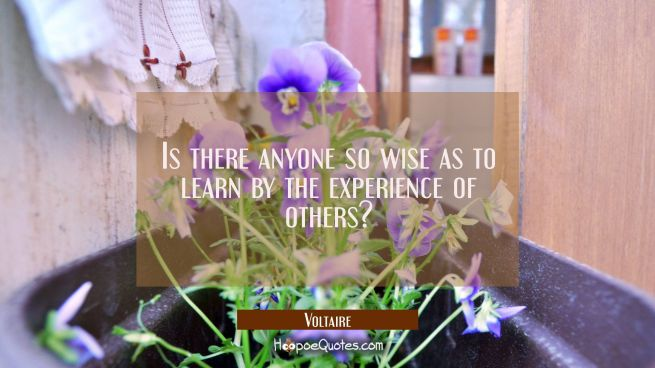 Is there anyone so wise as to learn by the experience of others?