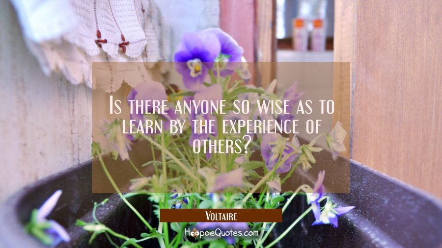 Is there anyone so wise as to learn by the experience of others? Voltaire Quotes