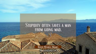 Stupidity often saves a man from going mad. Oliver Wendell Holmes Quotes