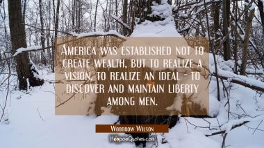 America was established not to create wealth but to realize a vision to realize an ideal - to disco Woodrow Wilson Quotes