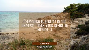 Everything is perfect in the universe - even your desire to improve it.