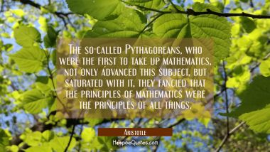 The so-called Pythagoreans who were the first to take up mathematics not only advanced this subject