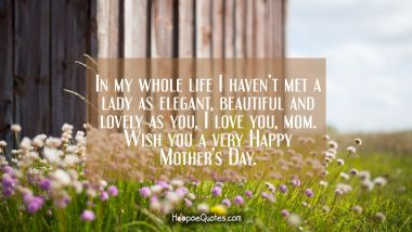 In my whole life I haven't met a lady as elegant, beautiful and lovely as you. I love you, mom. Wish you a very Happy Mother's Day. Mother's Day Quotes
