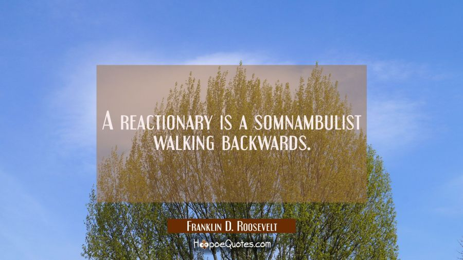 A reactionary is a somnambulist walking backwards. Franklin D. Roosevelt Quotes