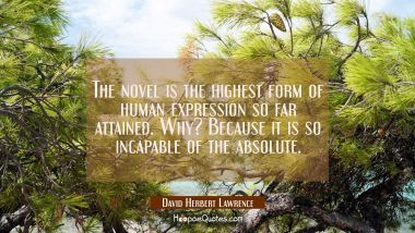 The novel is the highest form of human expression so far attained. Why? Because it is so incapable