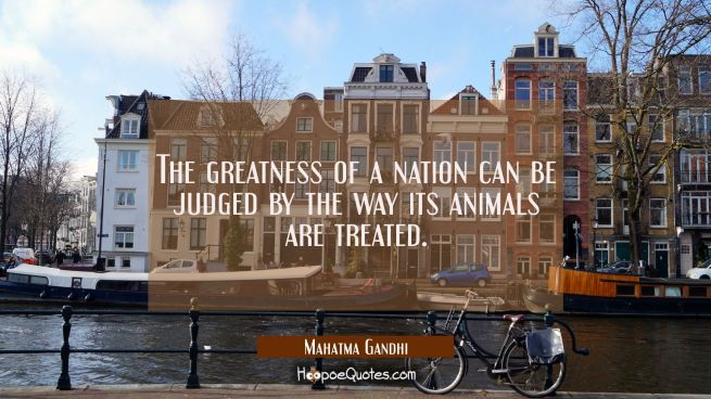 The greatness of a nation can be judged by the way its animals are treated.