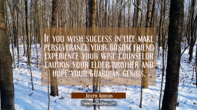 If you wish success in life make perseverance your bosom friend experience your wise counselor caut