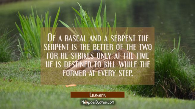 Of a rascal and a serpent the serpent is the better of the two for he strikes only at the time he i