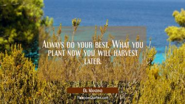 Always do your best. What you plant now you will harvest later. Og Mandino Quotes