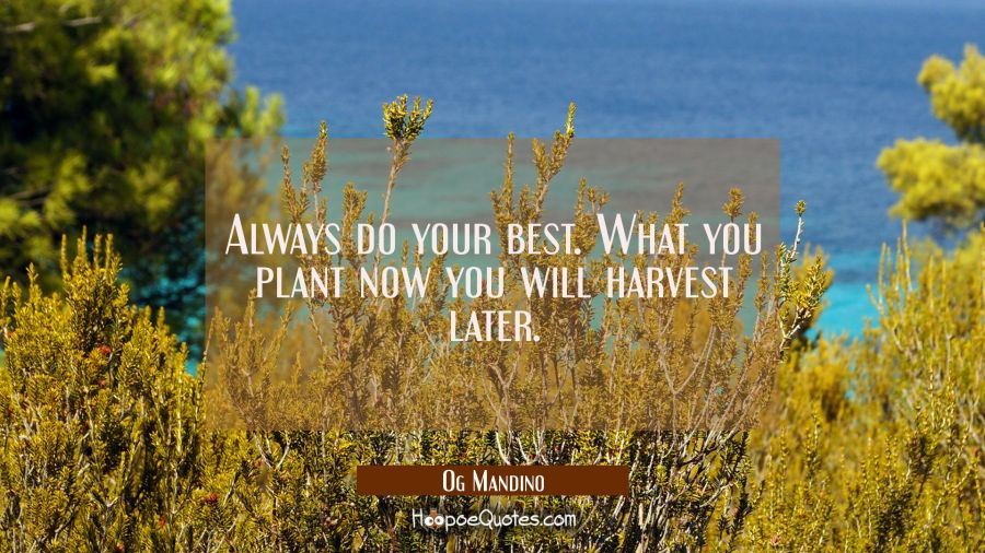 Quote of the Day - Always do your best. What you plant now you will harvest later. - Og Mandino