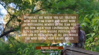 Appraisals are where you get together with your team leader and agree what an outstanding member of