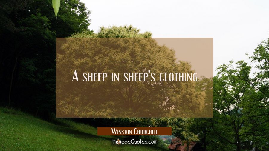 A sheep in sheep's clothing Winston Churchill Quotes