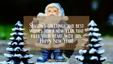 Season's greetings and best wishes for a new year that fills your heart with joy. Happy New Year!