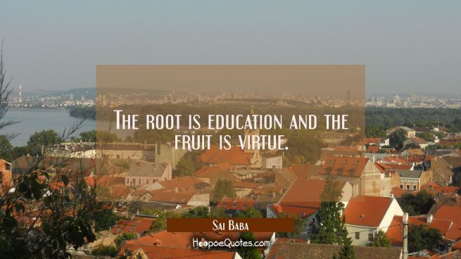 The root is education and the fruit is virtue.