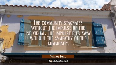 The community stagnates without the impulse of the individual. The impulse dies away without the sy William James Quotes