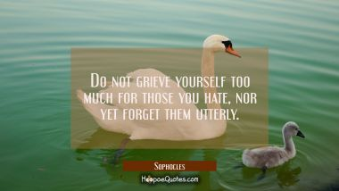Do not grieve yourself too much for those you hate nor yet forget them utterly.