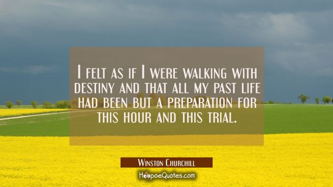I felt as if I were walking with destiny and that all my past life had been but a preparation for t