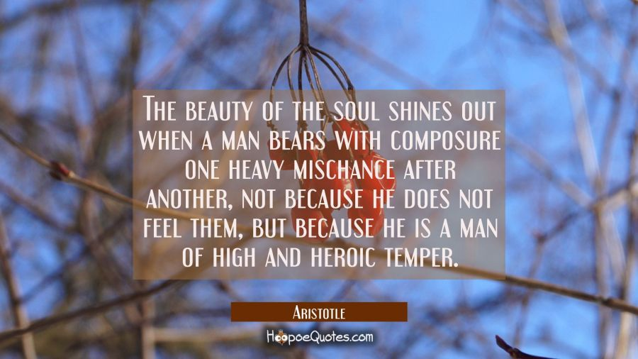 The beauty of the soul shines out when a man bears with composure one heavy mischance after another Aristotle Quotes