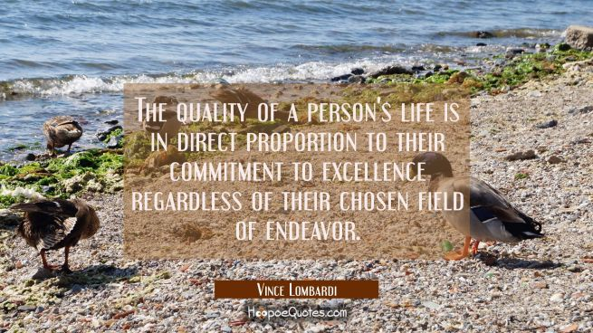 The quality of a person's life is in direct proportion to their commitment to excellence regardless