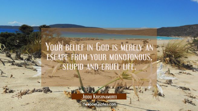 Your belief in God is merely an escape from your monotonous stupid and cruel life.